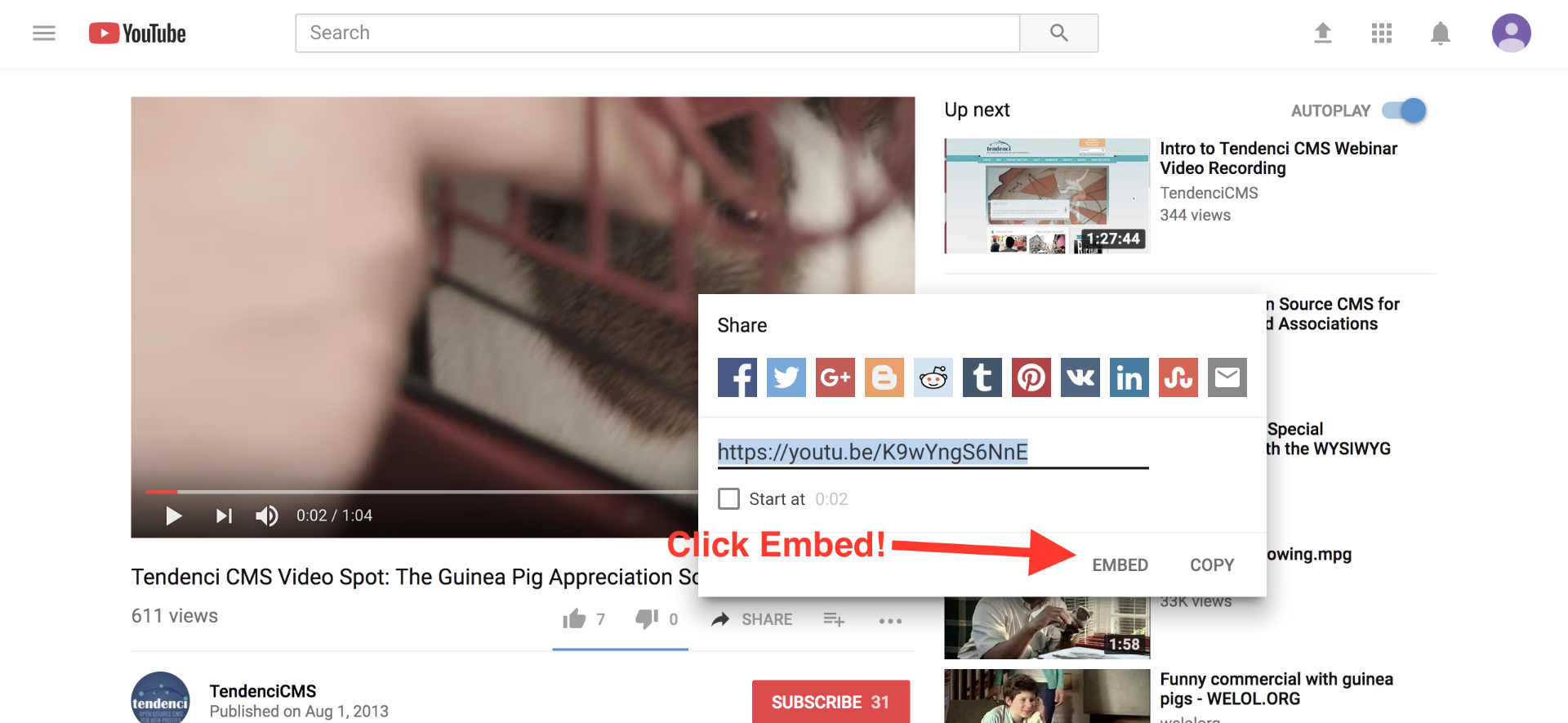 click embed youtube tendenci