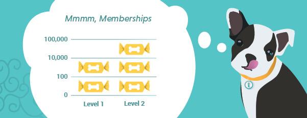 Membership Levels