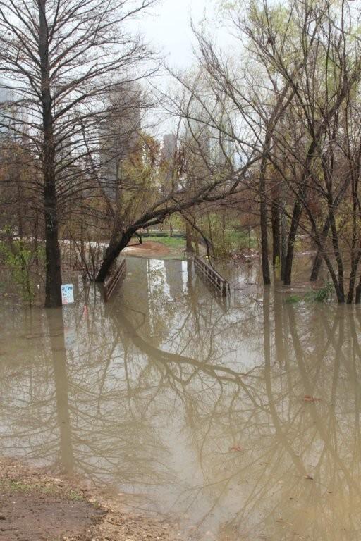 The Rain 1-25-2012 Flooding on the Bayou